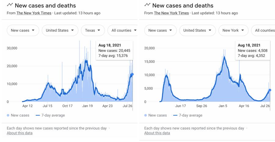Cavid Cases August 2021